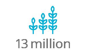 13 million