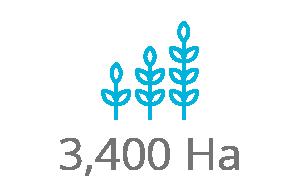 6,000 farmers